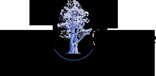 Specialisaties Tuinrenovatie door Ronny Kroeze
