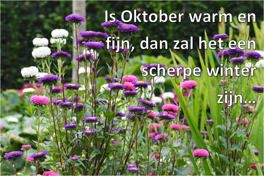 Tuinspreuk Oktober