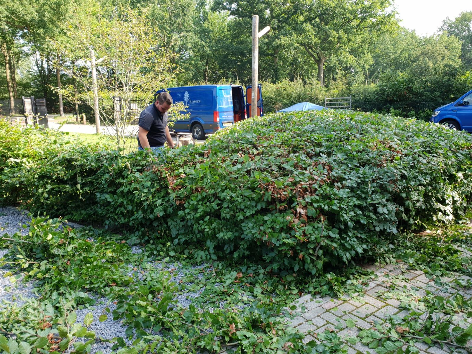 Onderhoud tuin Barneveld
