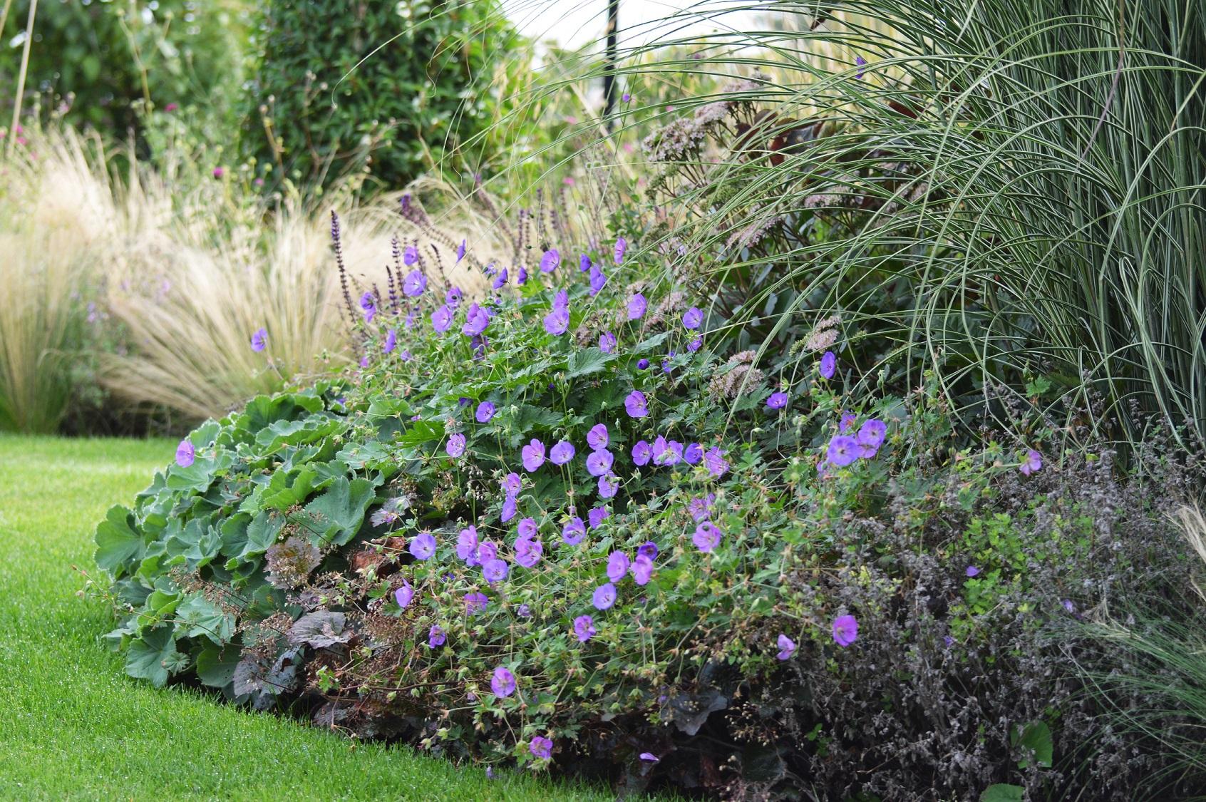 beplantingsplan tuin
